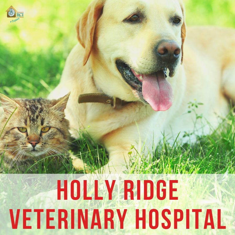Holly Ridge Veterinary Hospital - RCI Plus Topsail