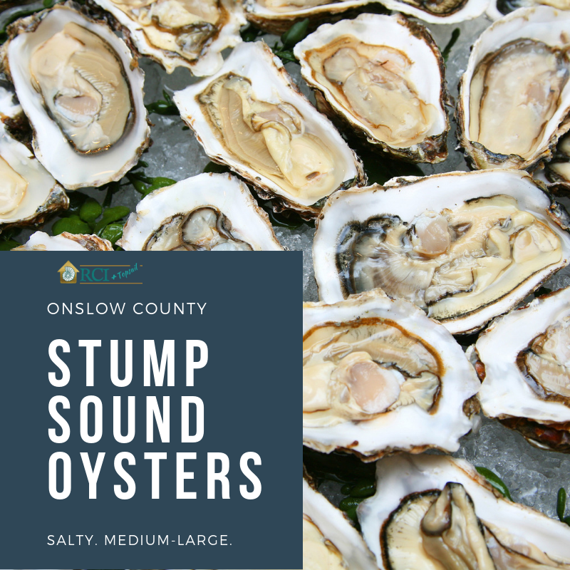 onslow nc stump sound oysters - RCI plus topsail