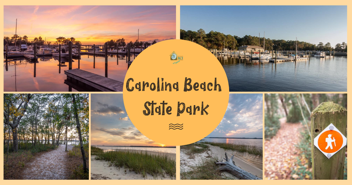 Carolina Beach State Park - RCI + Topsail