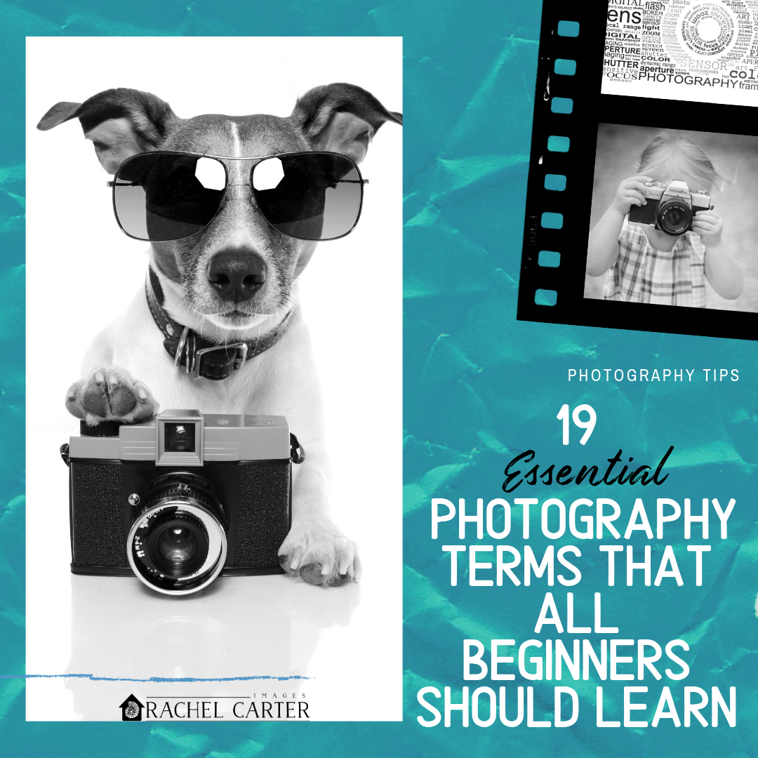 19 Photography terms that all beginners should learn - Rachel Carter