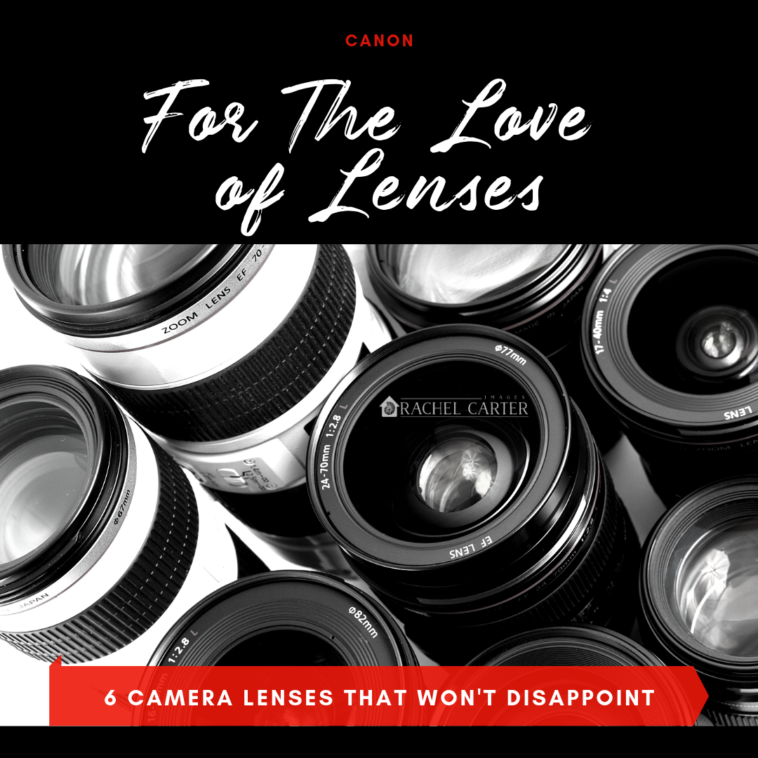 For The love of lenses - Camera Lenses that Won't Disappoint - Rachel Carter Images