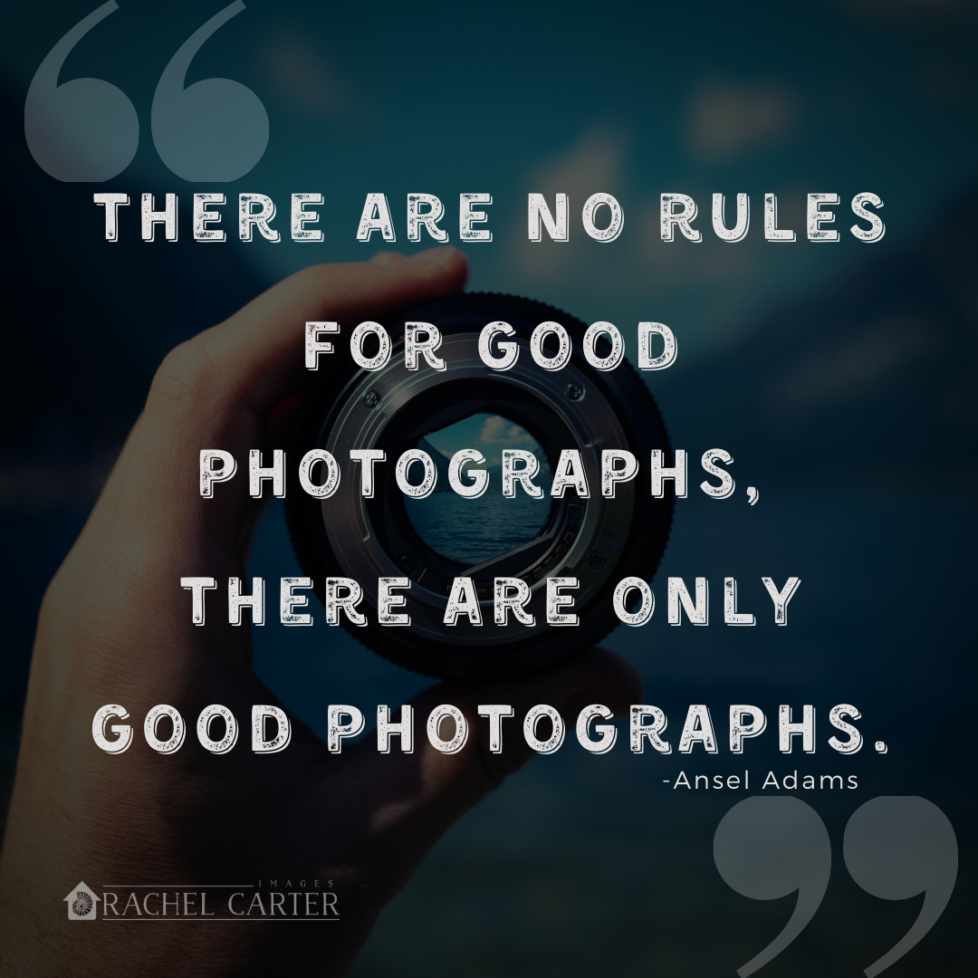 There are no rules for good photographs, there are only good photographs. (Ansel Adams)