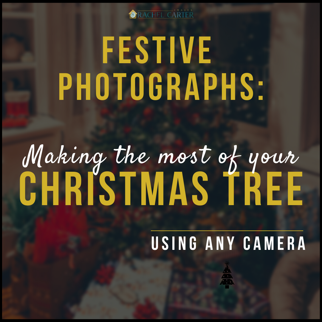 Christmas Tree Photography Tips Using Any Camera - rachel carter images